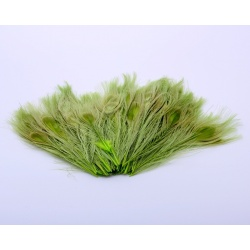 PEACOCK EYES - GREEN
