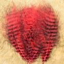 GRIZZLY MARABOU - červená / černě pruhovaná
