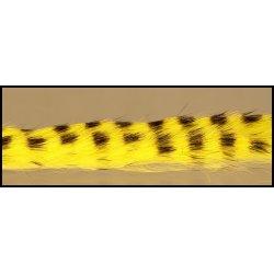 ZONKER BARRED - žluto-černý 4 mm - 70 cm
