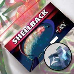 SHELLBACK - BLUE